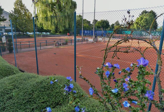 Hirschberg-Großsachsen:  TVG-Sportanlage wird nach Rudi Frößinger benannt