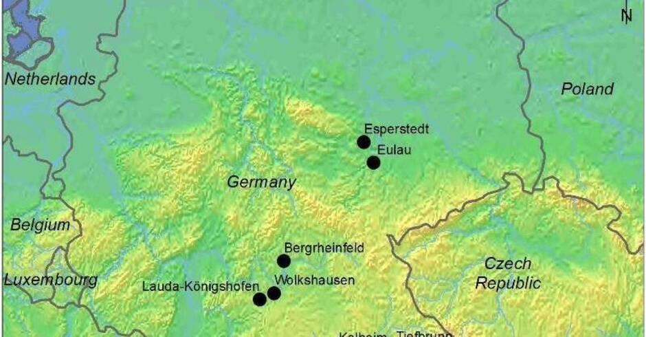 bang meine frau Gundelsheim(Baden-Württemberg)