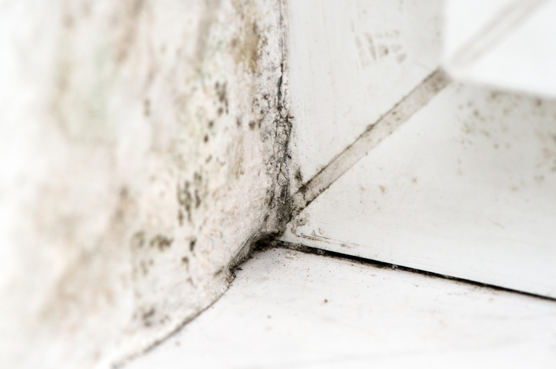 die dunkle seite des winters schimmel im haus vorbeugen haus garten rhein neckar zeitung. Black Bedroom Furniture Sets. Home Design Ideas