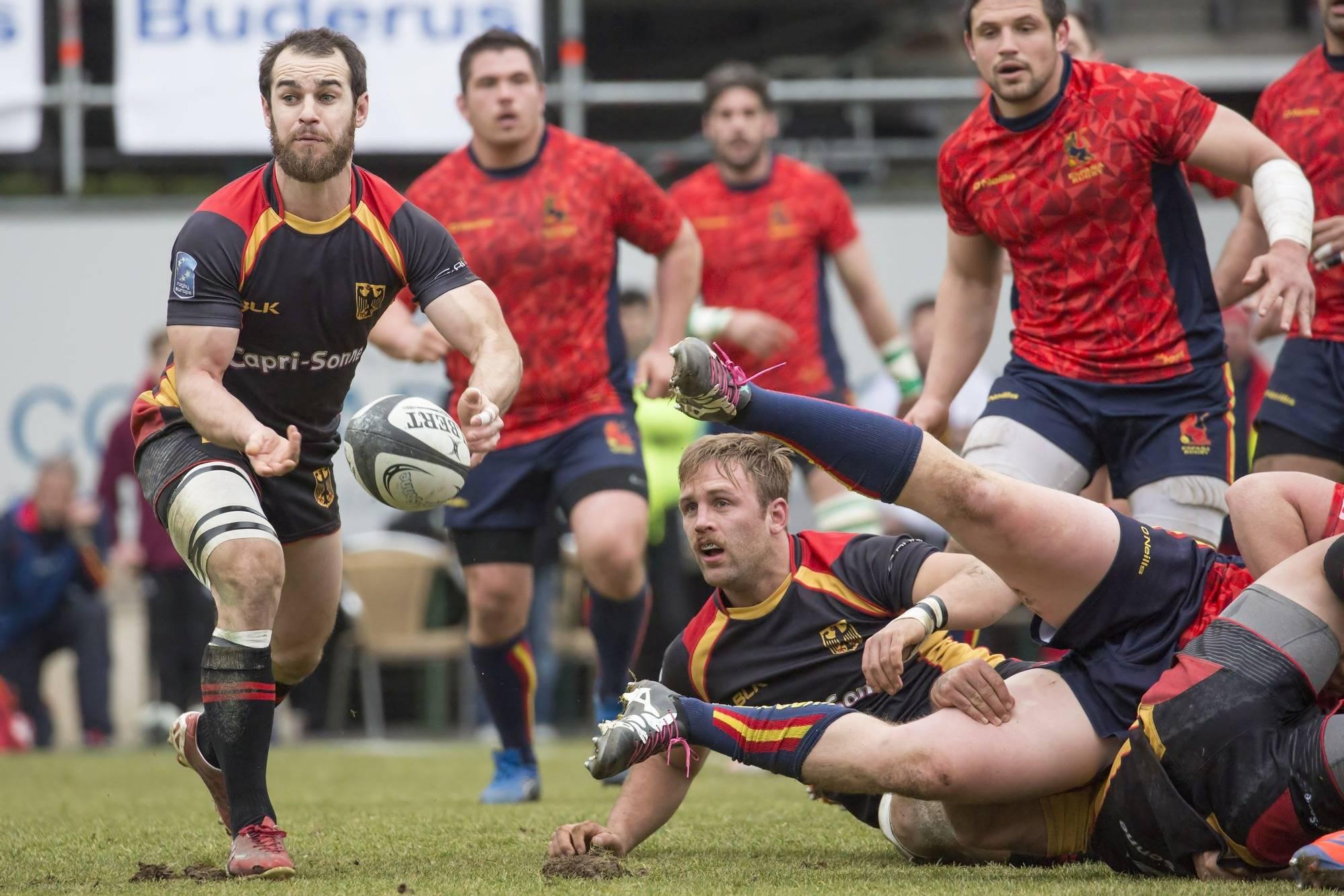 wm rugby 2019