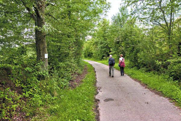 Kraichgau Wandern