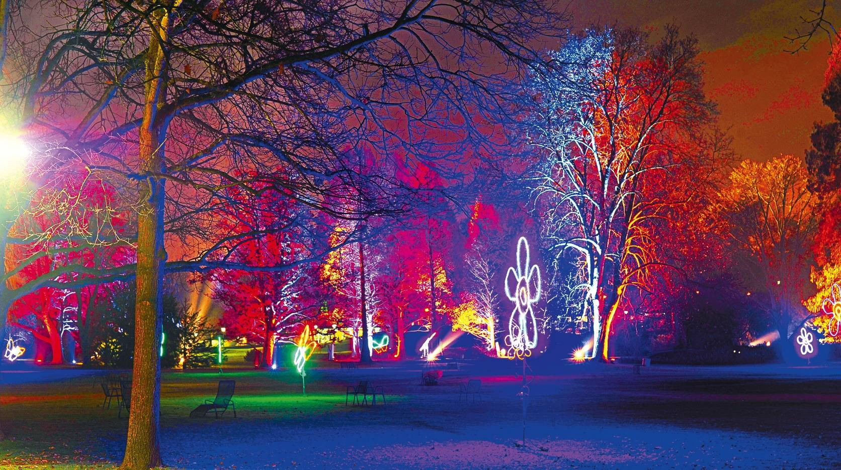 Mannheimer Luisenpark macht die Winterlichter an - Nachrichten aus Mannheim - Rhein Neckar Zeitung