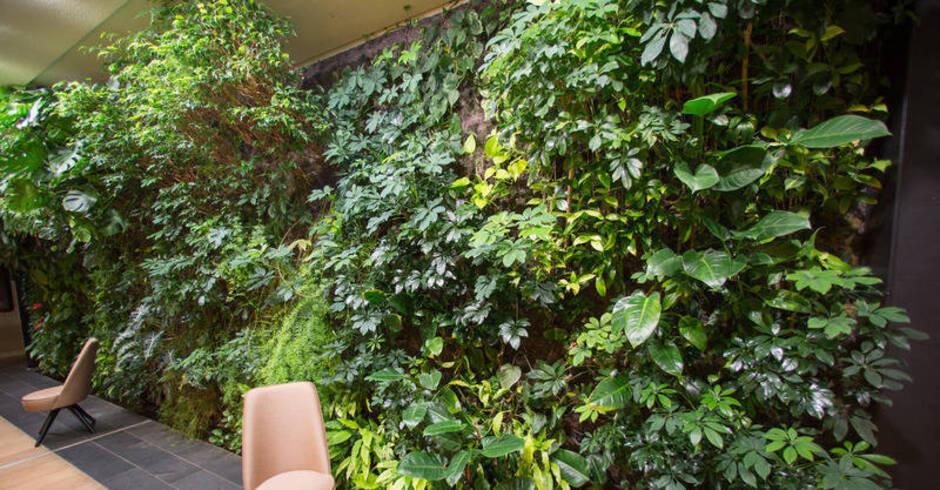 Wandgarten Selber Machen ein dschungel fürs wohnzimmer echte pflanzen ersetzen die tapete
