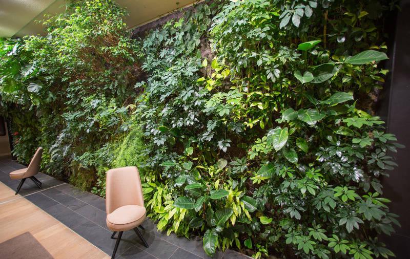 Ein Dschungel Furs Wohnzimmer Echte Pflanzen Ersetzen Die Tapete
