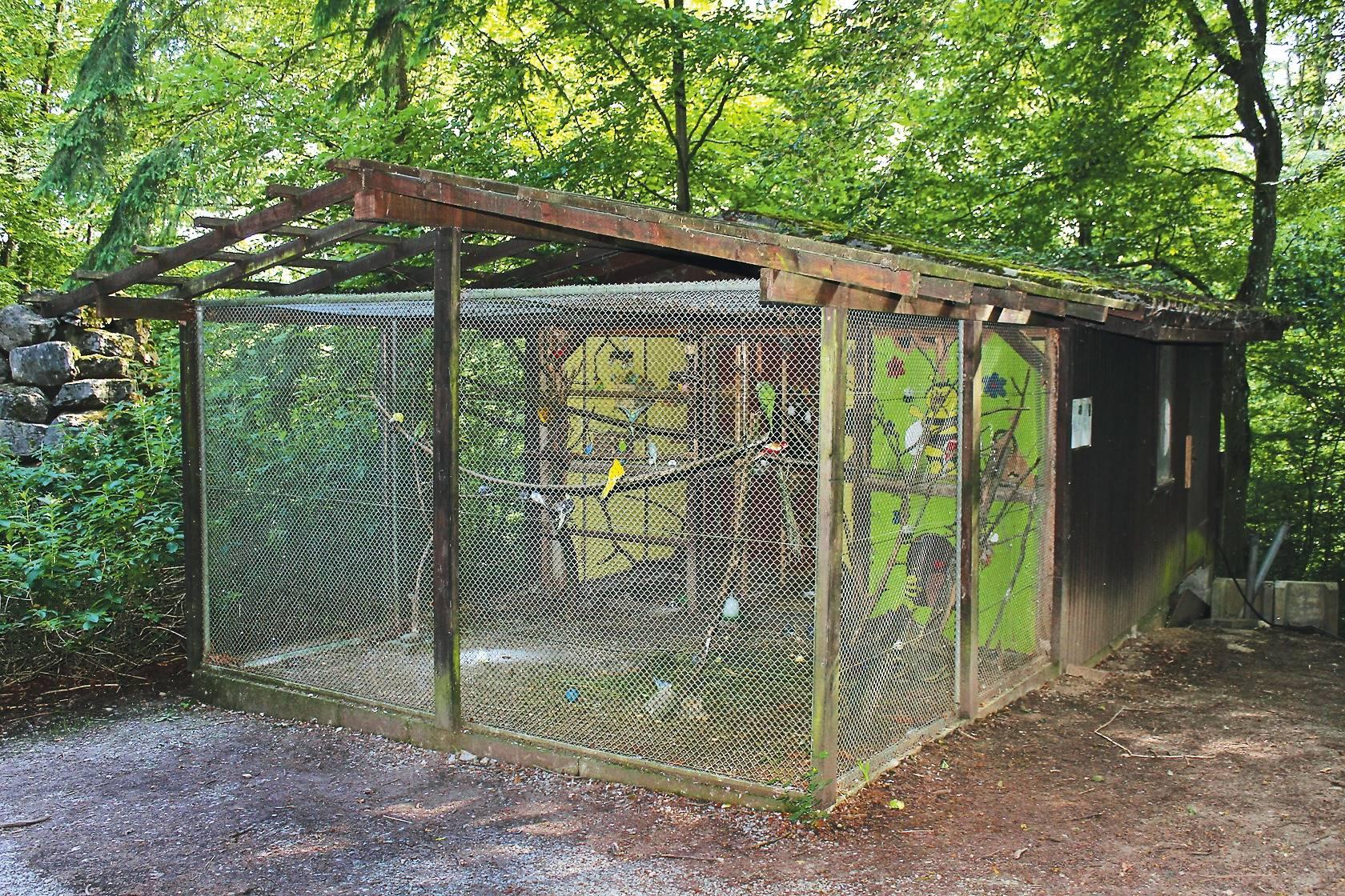 buchen tierpark hasenwald wird rundum erneuert buchen rhein neckar zeitung. Black Bedroom Furniture Sets. Home Design Ideas