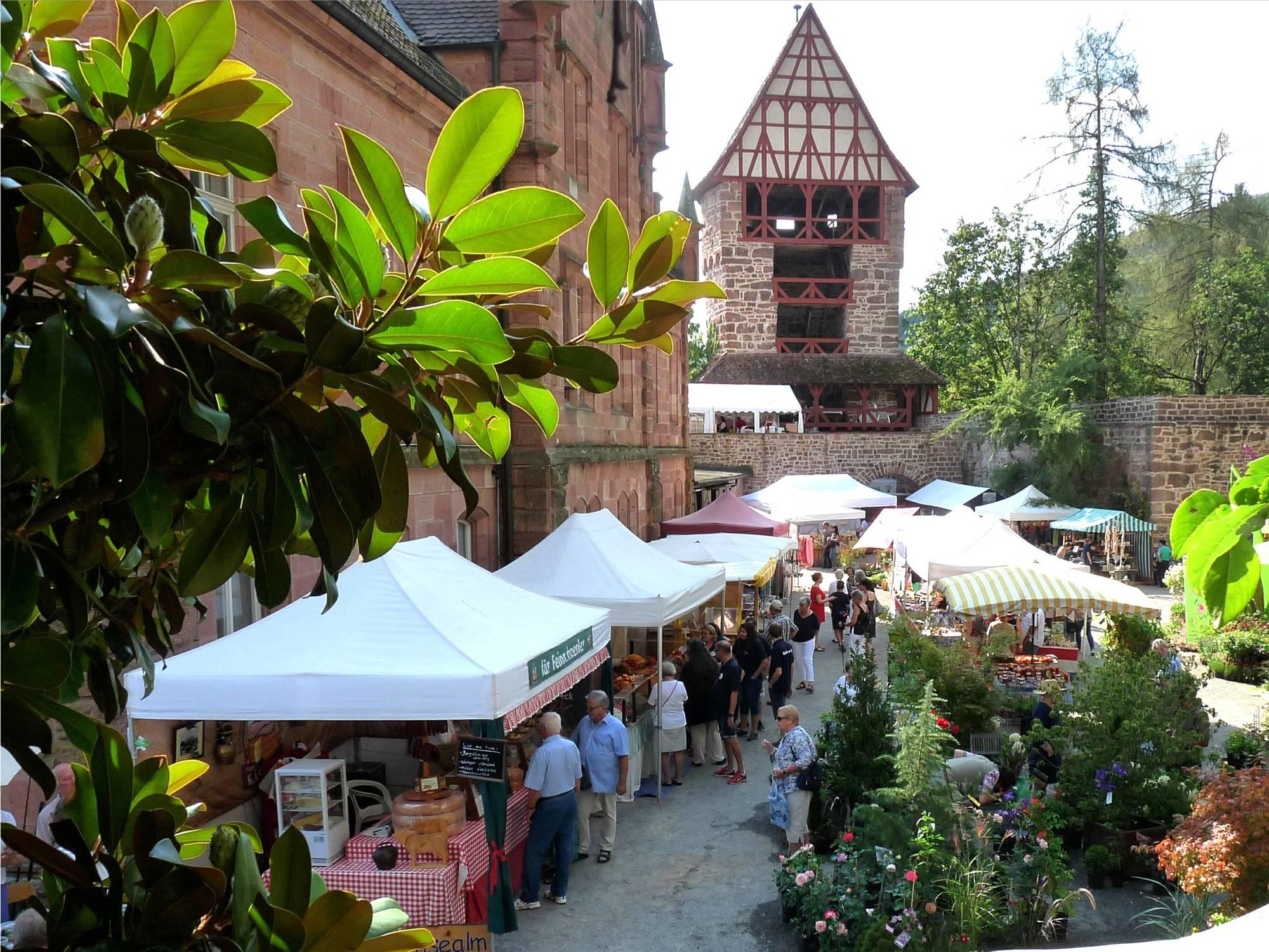 Zwingenberg Bunter Gartenmarkt Bei Kaiserwetter Eberbach Rhein