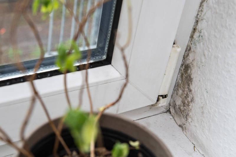 schimmelschutz f r 9 99 euro luftfeuchtigkeit mit. Black Bedroom Furniture Sets. Home Design Ideas