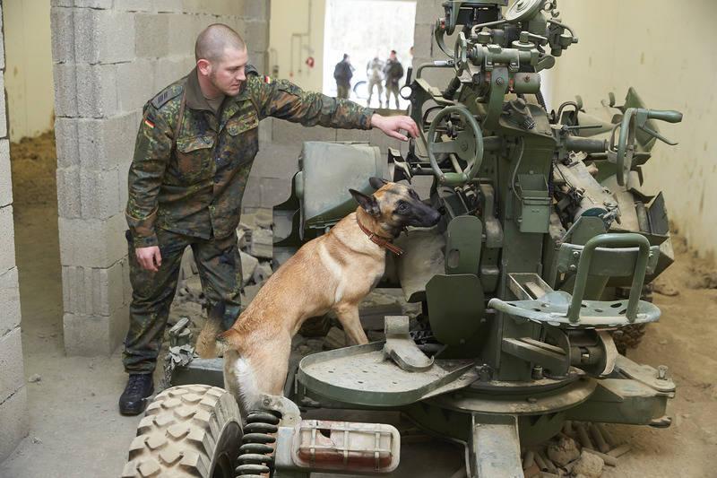 93987cc580 Therapie auf vier Pfoten: Neue Jobs für Hunde der Bundeswehr - Rhein ...