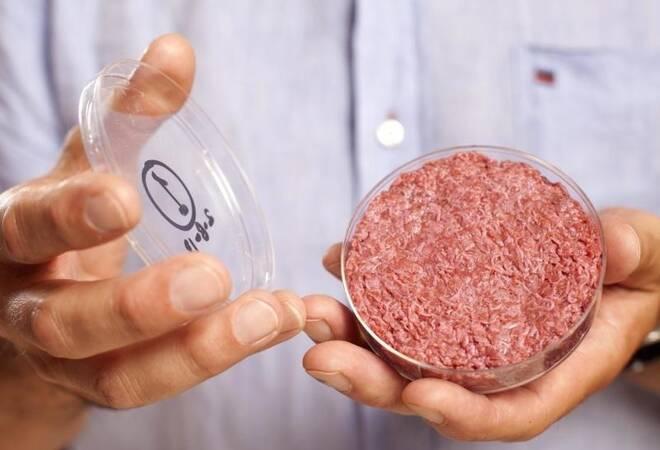 Fleisch Aus Dem Labor