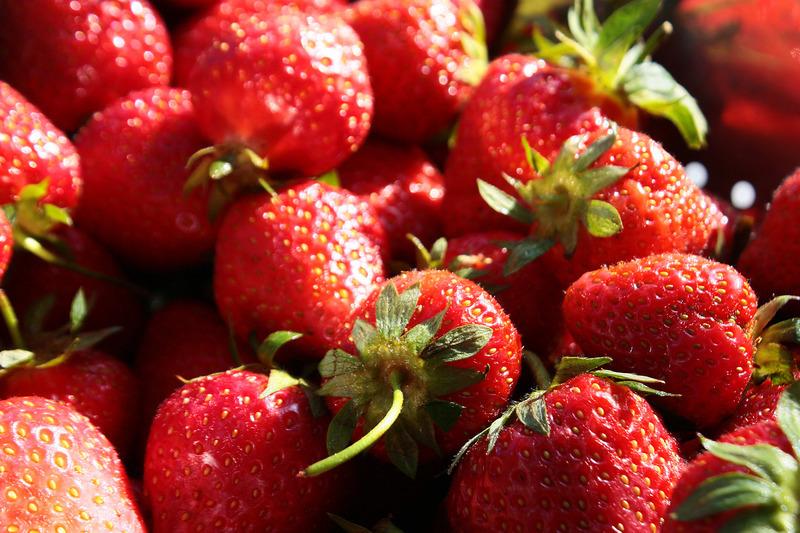 s e fr chtchen tipps zum anbau von erdbeeren im beet und k bel haus garten rhein neckar. Black Bedroom Furniture Sets. Home Design Ideas