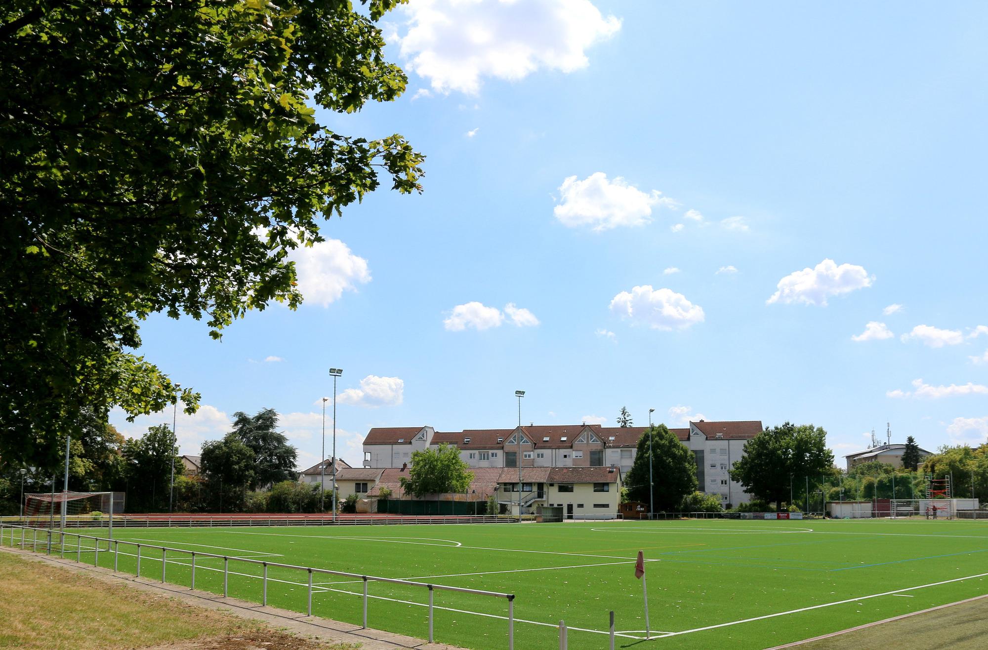 Sportvereine Heidelberg